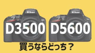 D3500とD5600の比較