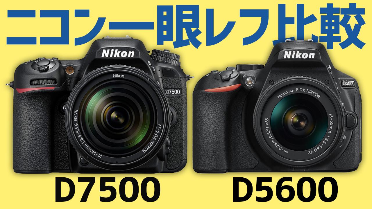 ニコンD7500とD5600の比較