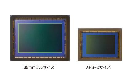 フルサイズセンサーとAPS-Cサイズセンサー