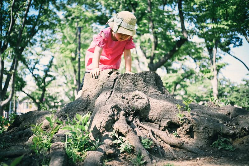 子ども目線のローアングル写真